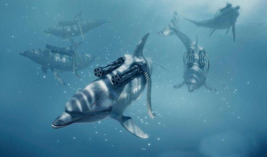 killer dolphins