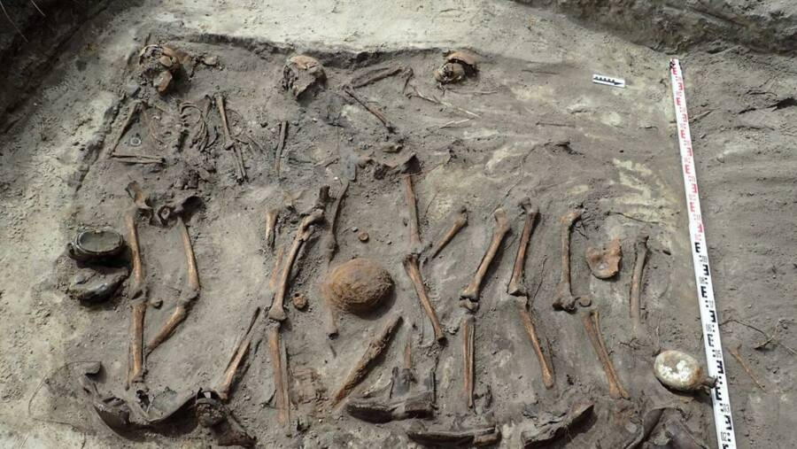 The skeletons of Nazi Soldiers were found side by side