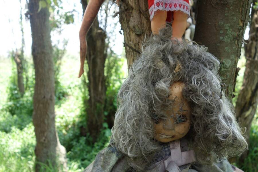 While the dolls themselves are eerie sight to behold, facts surrounding the death of Don Julian are far more ominous.